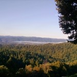 Looking south west over the majestic Anderson Valley with hints of fog rolling in.