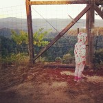 Lily, age 3.5, supervising the Pinot pick