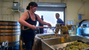 Angie Chang (@changie24) pitching Fenaughty Vineyard Grenache Blanc.  Check out those biceps!
