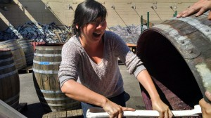 Angie Chang (@changie24) digging out a vat of Fenaughty Vineyard Cinsault